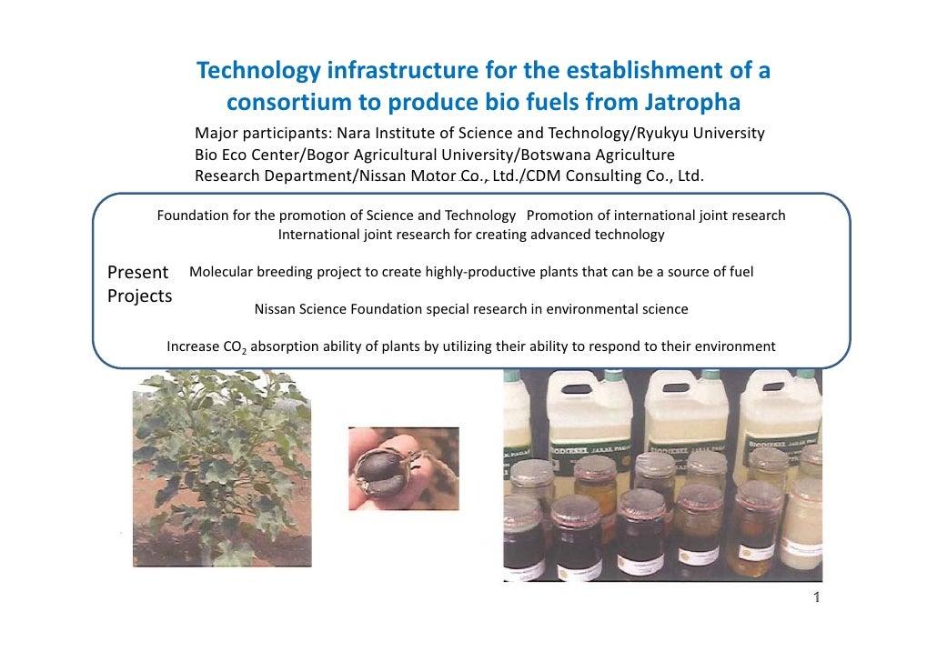 Consortium to produce_bio_fuels_from_jatropha[1]