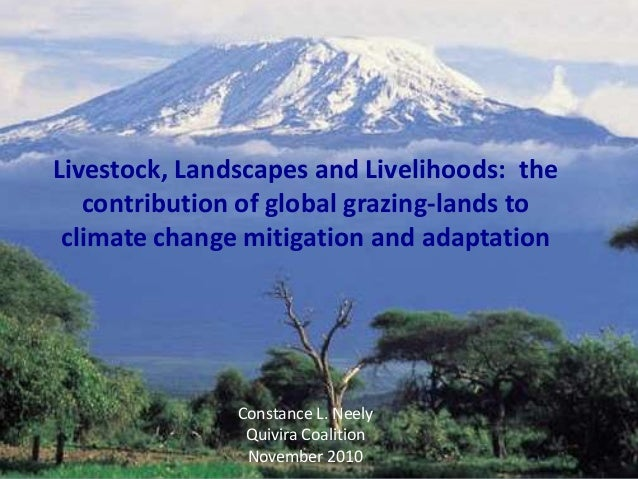 F Livestock, Landscapes and Livelihoods: the contribution of global grazing-lands to climate change mitigation and adaptation - Constance Neely