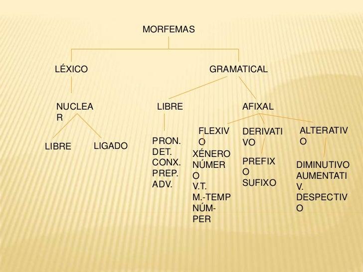 MORFEMAS LÉXICO                          GRAMATICAL  NUCLEA              LIBRE             AFIXAL  R                      ...