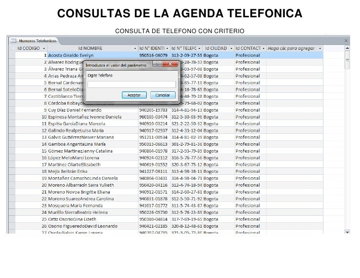 Consultas (1)