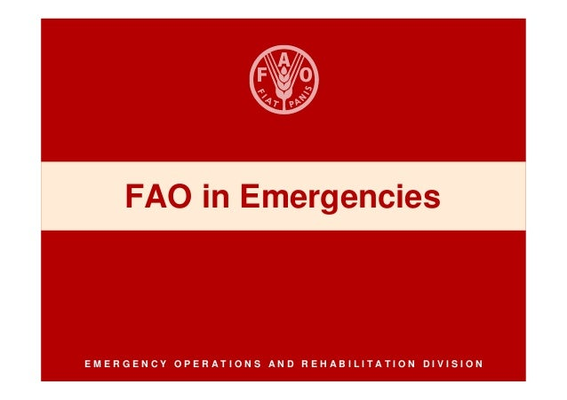 FAO in EmergenciesEMERGENCY OPERATIONS AND REHABILITATION DIVISION