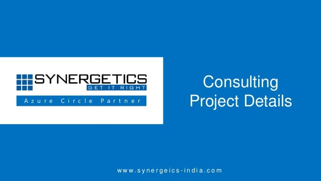 Synergetics Consulting Project Details