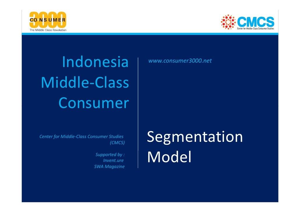 Consumer 3000 Segmentation Model
