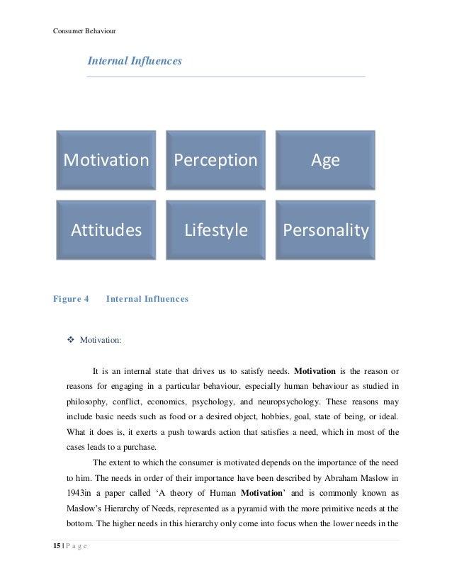 Consumer behaviour essay