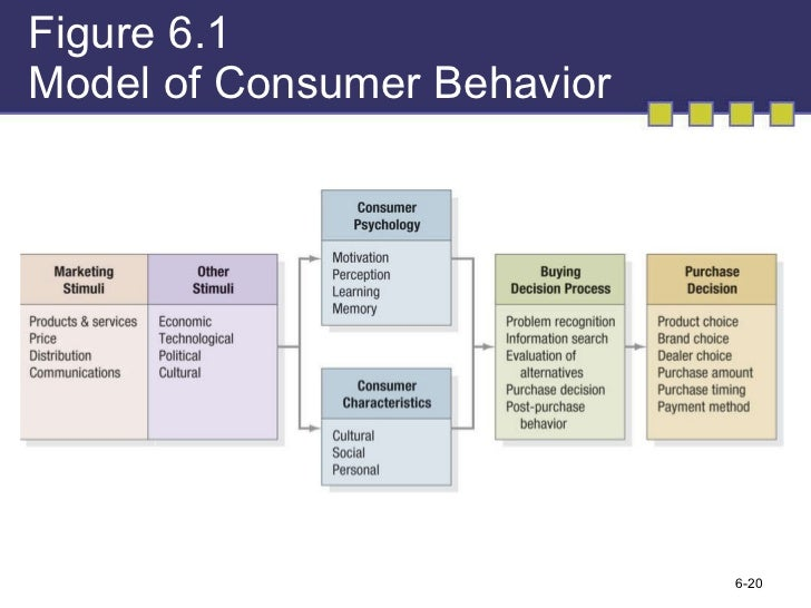 Consumer Behavior Essay