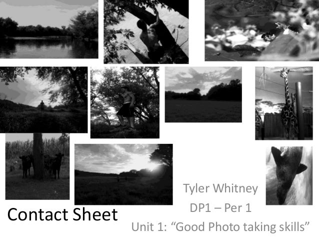 "Contact Sheet Tyler Whitney DP1 – Per 1 Unit 1: ""Good Photo taking skills"""