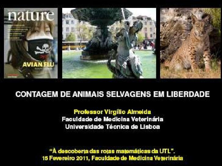 À Descoberta das Rotas Matemáticas na UTL - Contagem de animais selvagens em liberdade