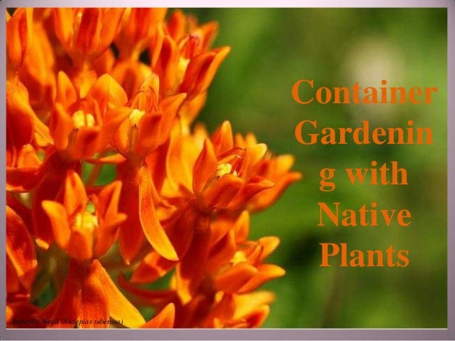 Gardening with Native Plants - Container Gardening