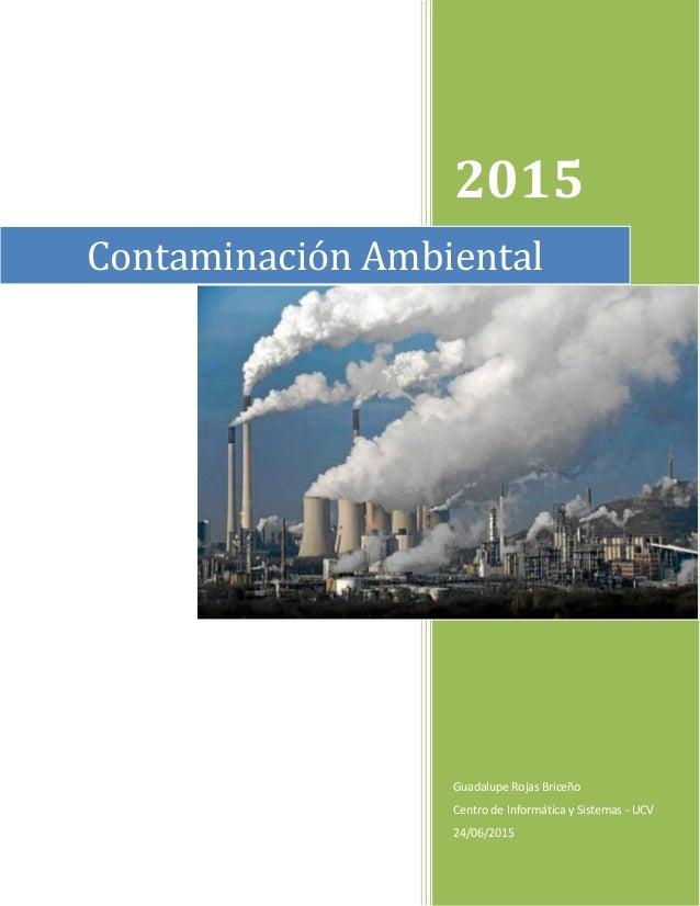 2015 Guadalupe Rojas Briceño Centro de Informática y Sistemas - UCV 24/06/2015 Contaminación Ambiental