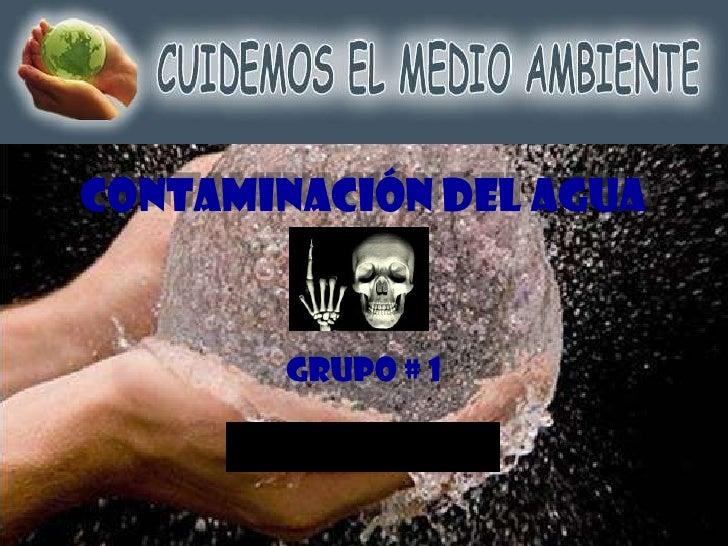 Contaminación del Agua<br />Grupo # 1<br />