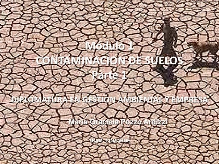 Módulo 1      CONTAMINACION DE SUELOS              Parte 1 DIPLOMATURA EN GESTION AMBIENTAL Y EMPRESA              María G...