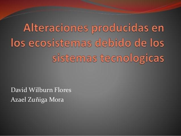 David Wilburn Flores Azael Zuñiga Mora