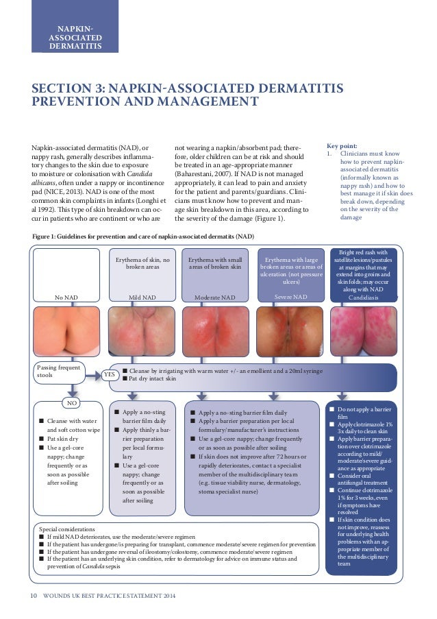 wound management principles and practice pdf