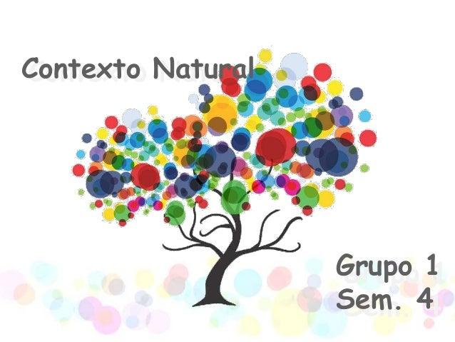Contexto NaturalContexto Natural                   Grupo 1                   Grupo 1                   Sem. 4             ...
