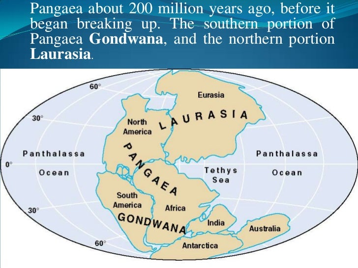 theory and proof of pangaea essay It is the theory that the earth's continents are constantly in motion and at one time they all collided together to form one massive continent about 300 million years ago pangaea (meaning all lands) began to break up and drift apart the plate moving deeper into the earth melts due to the.