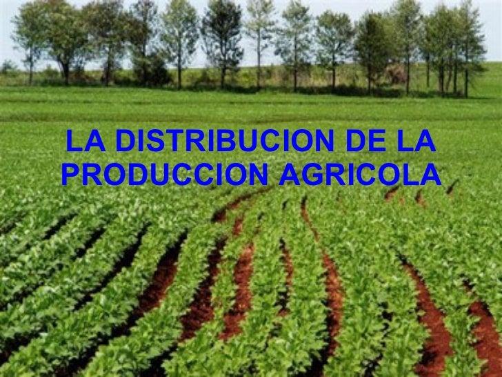 LA DISTRIBUCION DE LA PRODUCCION AGRICOLA