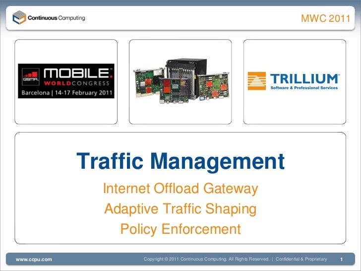 Traffic Management, DPI, Internet Offload Gateway