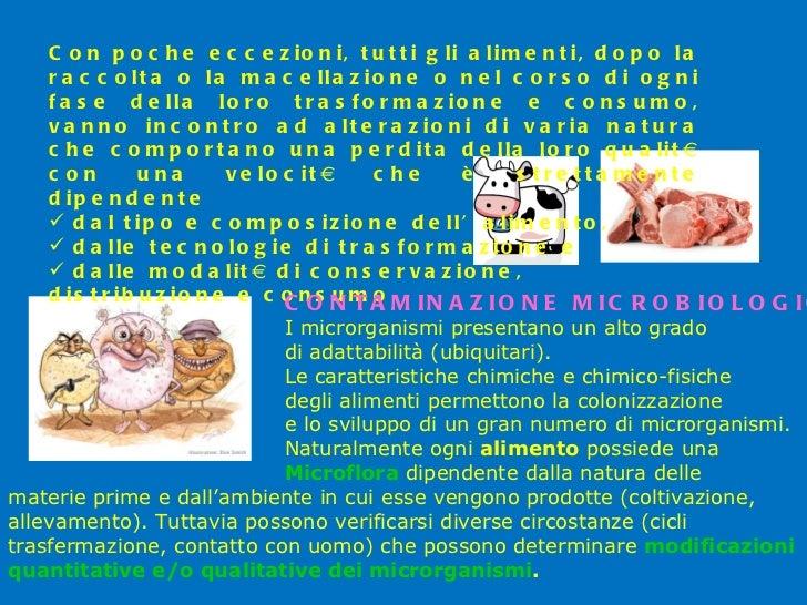 <ul><li>Con poche eccezioni, tutti gli alimenti, dopo la raccolta o la macellazione o nel corso di ogni fase della loro tr...