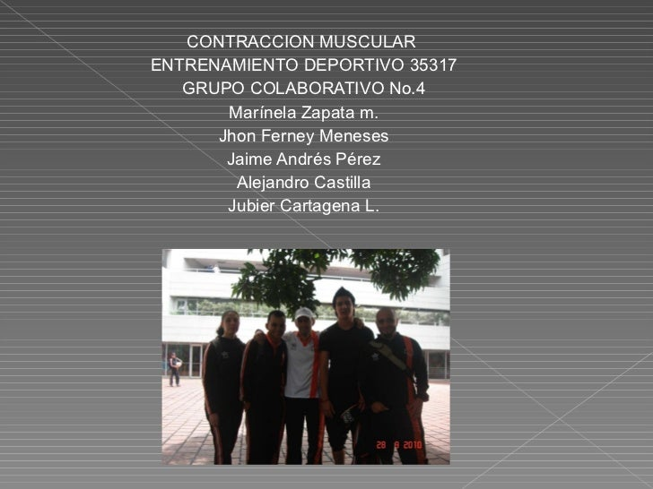 <ul><li>CONTRACCION MUSCULAR  </li></ul><ul><li>ENTRENAMIENTO DEPORTIVO 35317 </li></ul><ul><li>GRUPO COLABORATIVO No.4 </...