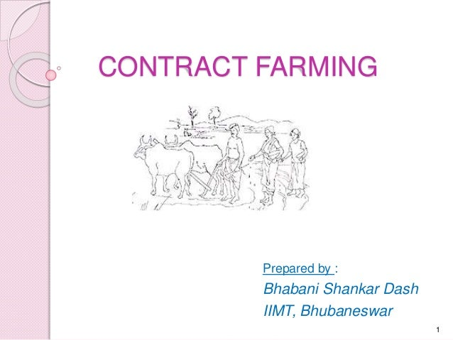 what is contract farming Contract farming can work if there is a collectivisation of small farmers for instance, 10 to 15 farmers get together, form a group, and sign a group contract.