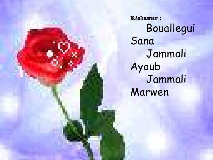 Réalisateur : <br />Bouallegui Sana<br />    Jammali Ayoub<br />    Jammali Marwen  <br />