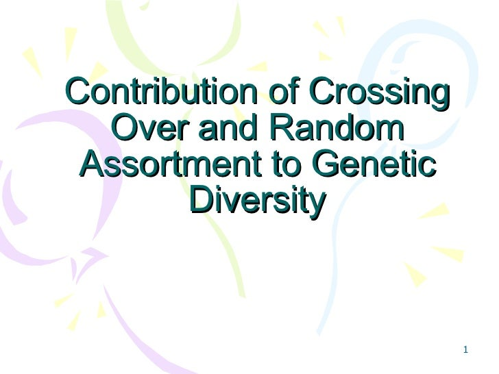 Contribution of Crossing Over and Random Assortment to Genetic Diversity