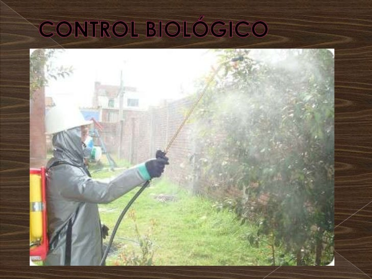 Control biológico bryan ríos