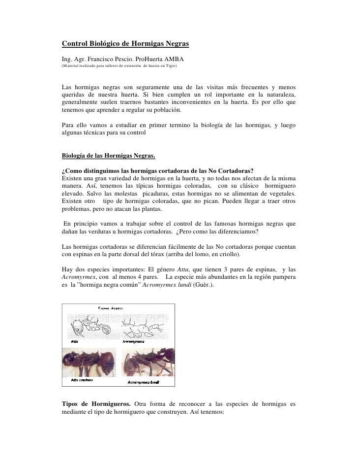 Control Biológico de Hormigas NegrasIng. Agr. Francisco Pescio. ProHuerta AMBA(Material realizado para talleres de extensi...