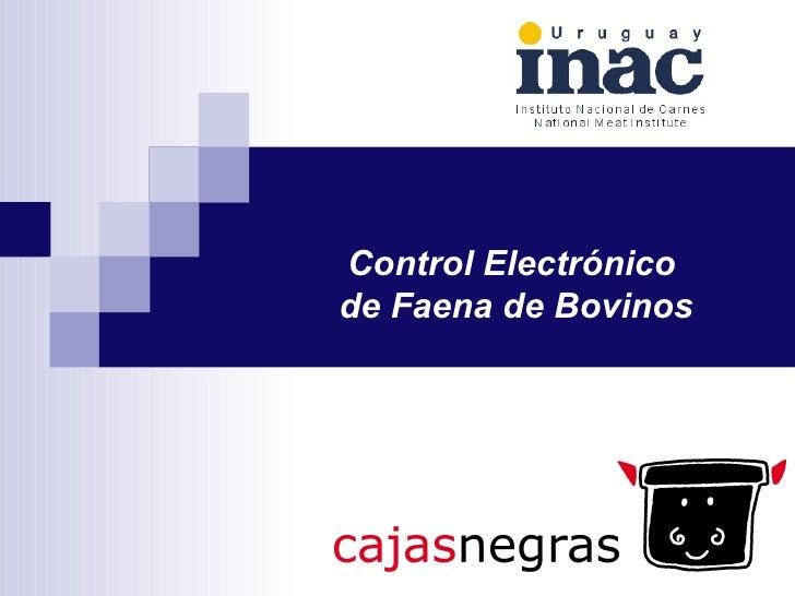 Control Electrónico  de Faena de Bovinos