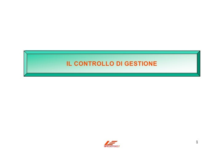 IL CONTROLLO DI GESTIONE                           1
