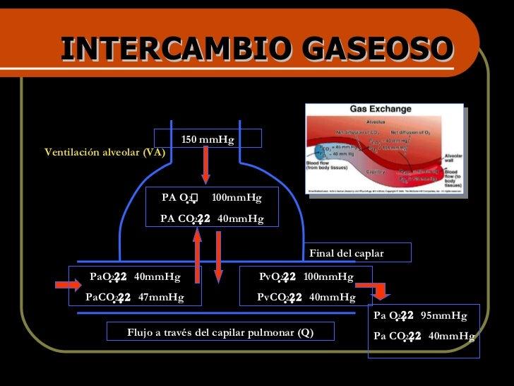 INTERCAMBIO GASEOSO Flujo a través del capilar pulmonar (Q) Ventilación alveolar (VA) Final del caplar 150 mmHg PA O 2 ...