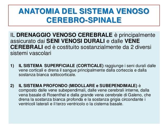 Ccsvi insufficienza venosa cronica cerebro spinale for Seni diversi