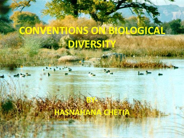 CONVENTIONS ON BIOLOGICAL DIVERSITY BY- HASNAHANA CHETIA