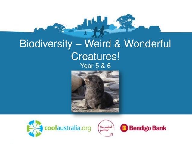 Cool australia biodiversity 5&6 presentation