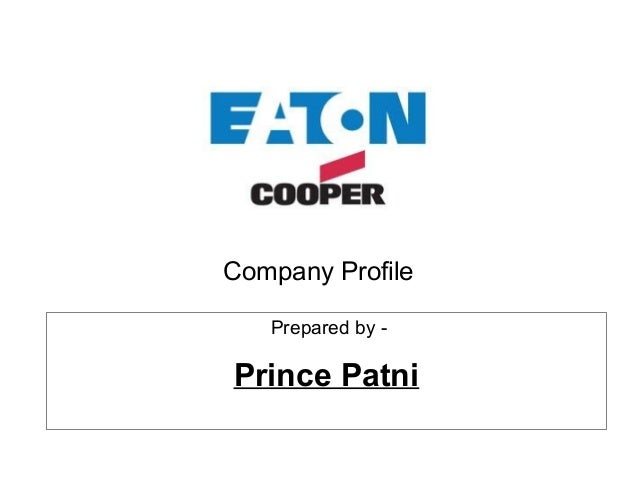 Company Profile Prepared by - Prince Patni