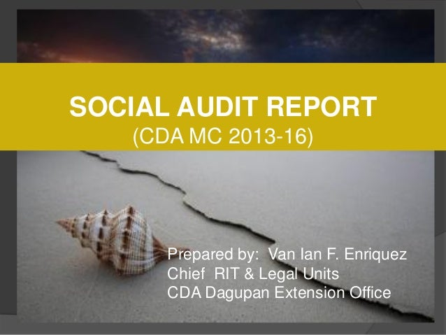 Coop Social Audit 2013