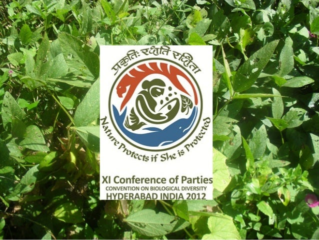 Agrobiodiversity in Great Himalayan National Park:  Challenges for Conservation