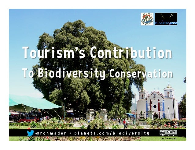 Tourism's Contribution to Biodiversity Conservation
