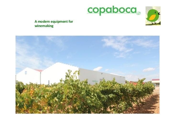 Copaboca spain great wines-second part