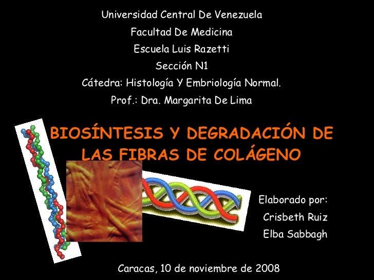 <ul><li>Universidad Central De Venezuela </li></ul><ul><li>Facultad De Medicina </li></ul><ul><li>Escuela Luis Razetti </l...