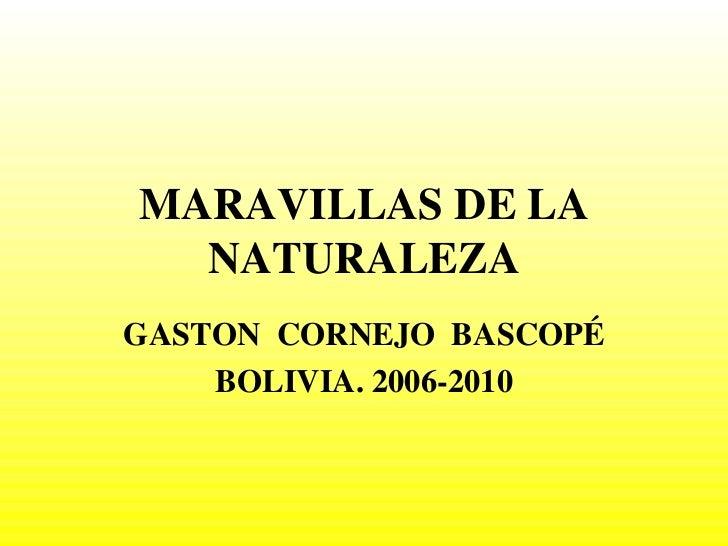 MARAVILLAS DE LA NATURALEZA GASTON  CORNEJO  BASCOPÉ BOLIVIA. 2006-2010
