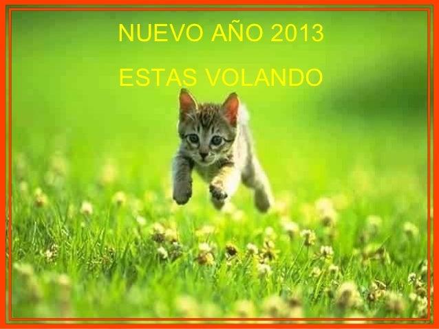 NUEVO AÑO 2013ESTAS VOLANDO