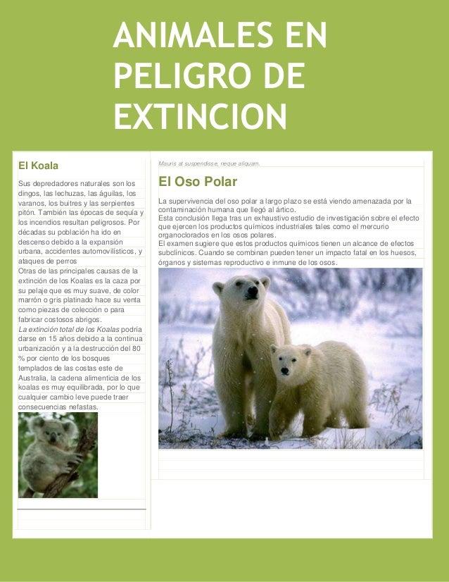 ANIMALES EN                             PELIGRO DE                             EXTINCION                                  ...