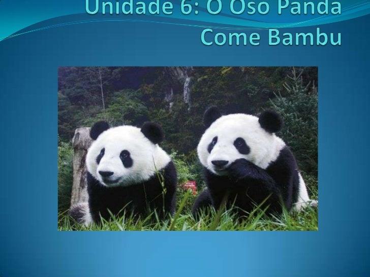 Unidade 6: O Oso Panda Come Bambu<br />