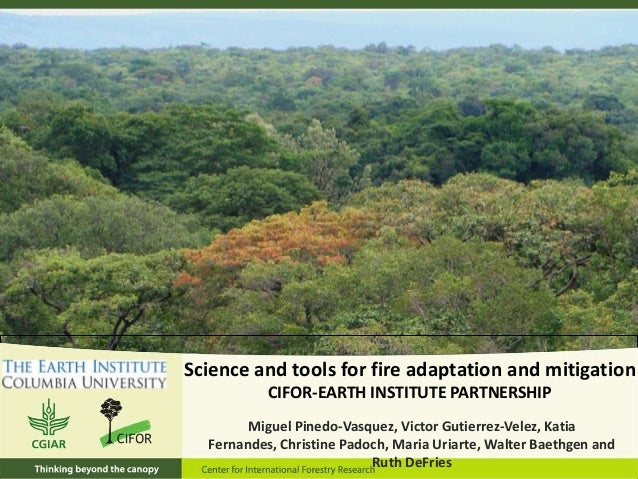 Science and tools for fire adaptation and mitigation CIFOR-EARTH INSTITUTE PARTNERSHIP Miguel Pinedo-Vasquez, Victor Gutie...