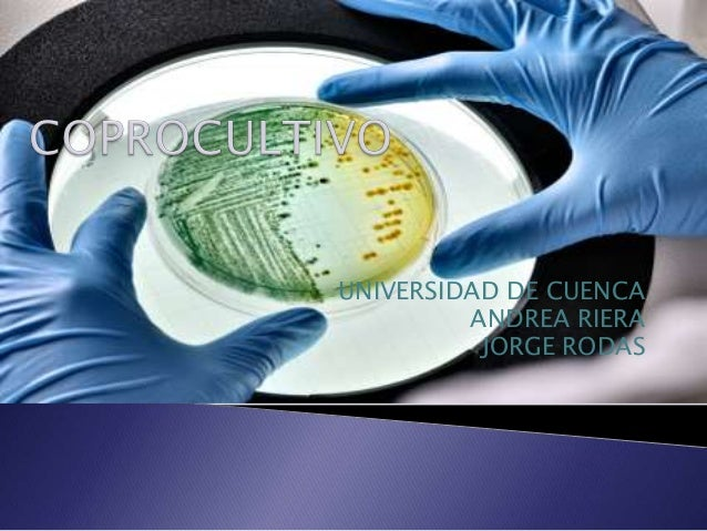UNIVERSIDAD DE CUENCA         ANDREA RIERA          JORGE RODAS