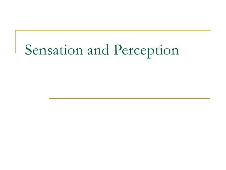 Sensation and Perception 2