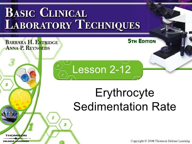 Copy (4) Of Lesson 2 12 Laboratory Esr