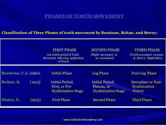 Slight Tooth Movement Phases of Tooth Movement