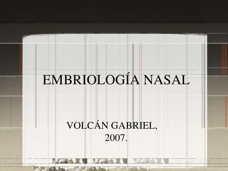 Embriologia nasal y malformaciones nasales
